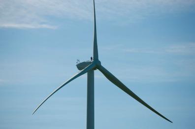 21824_Windmills2650