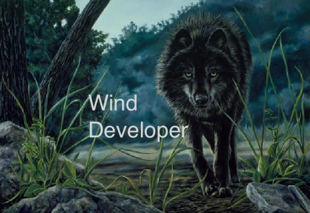 wind developer wolf