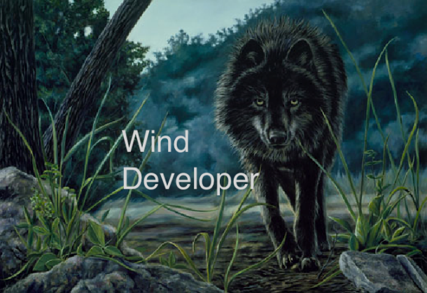 wind developer wolf