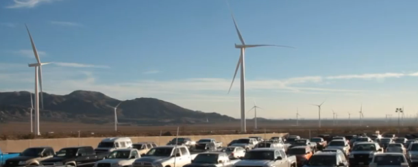ocotillo-turbines-many