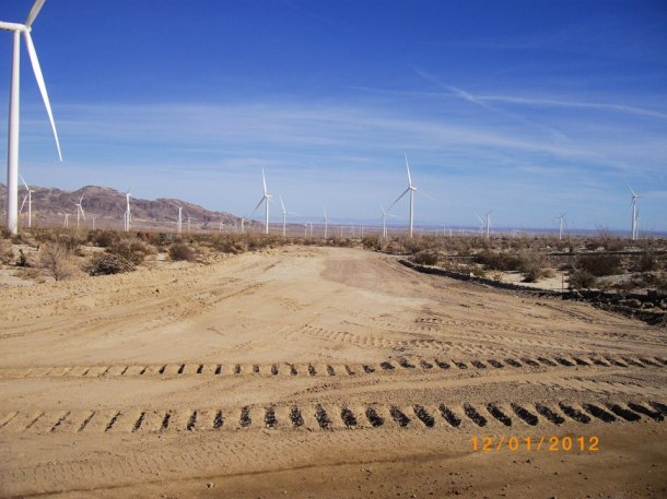 112 industrial turbines as far as the eye can see.  The view nicely broken up by a plethora of access roads.