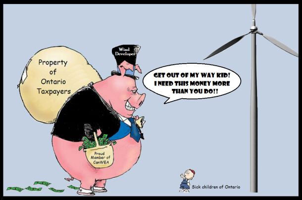 wind developer pigs