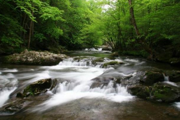 sff_waterfall-2