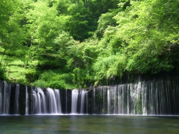 waterfall-lush-creek-forest-green-nature-us-688262