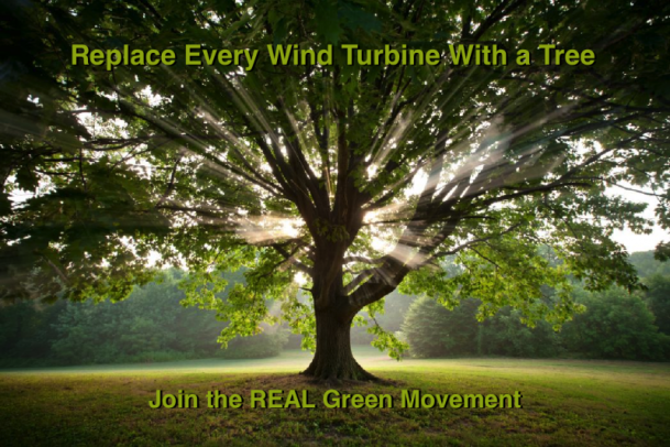 Real Green Movement