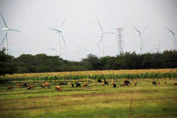 Mexico_wind_6b-2
